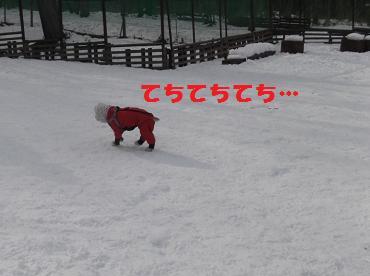 2012_0213_140739-DSCF2392.jpg
