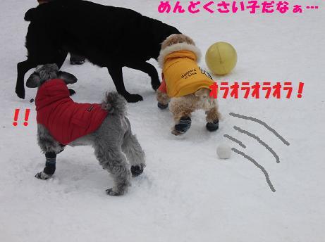 2012_0213_142354-DSCF2403.jpg