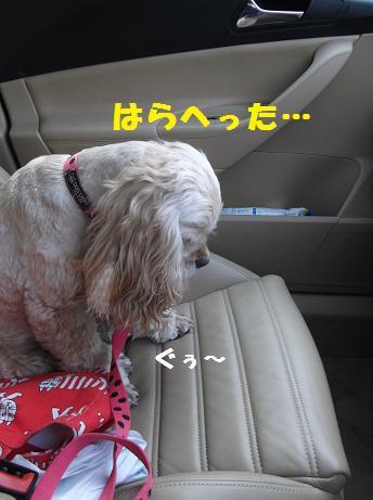 2012_0313_092103-DSCF2671.jpg