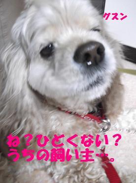 2012_0411_103824-DSCF2849.jpg