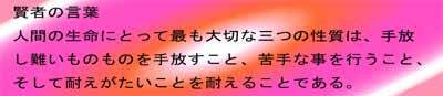 pho-4-1111_20140120204829acf.jpg