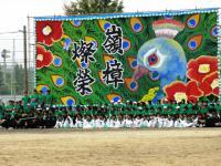 2012.9.6 新居浜西高校運動会の緑