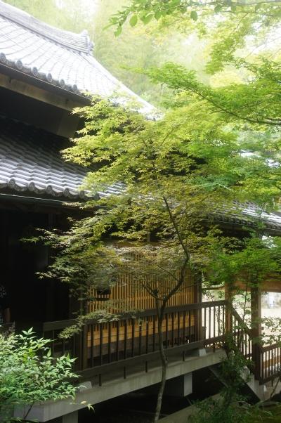 20110605_09_syojiji.jpg