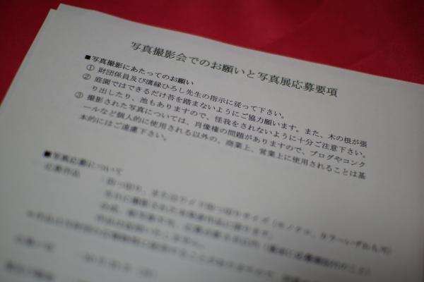 20111010_02_satsuei.jpg