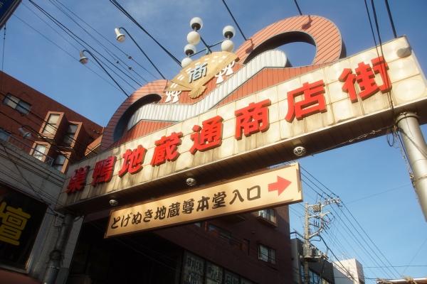 20120103_01_togenuki.jpg