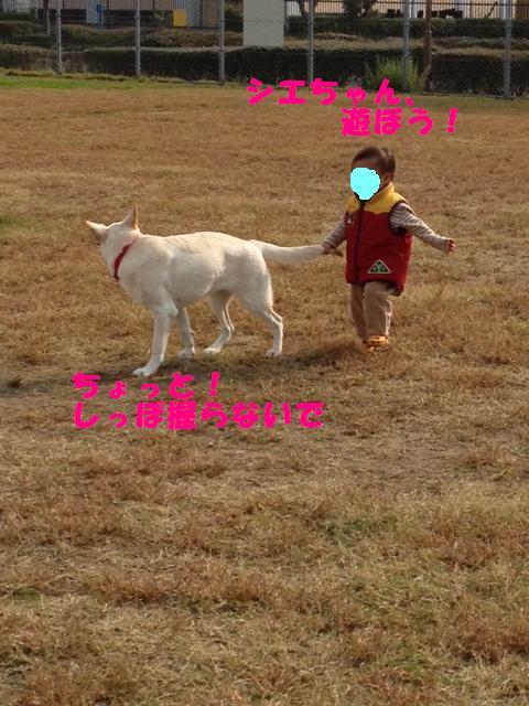riri-3写真