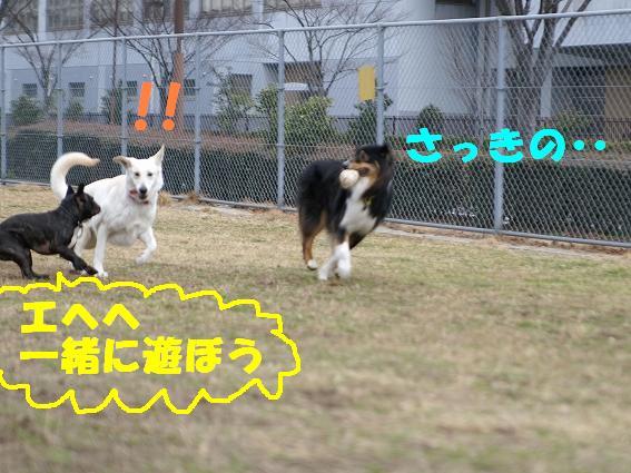 s-PICT0073.jpg