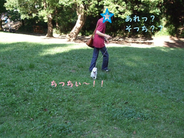 BLOG2146.jpg