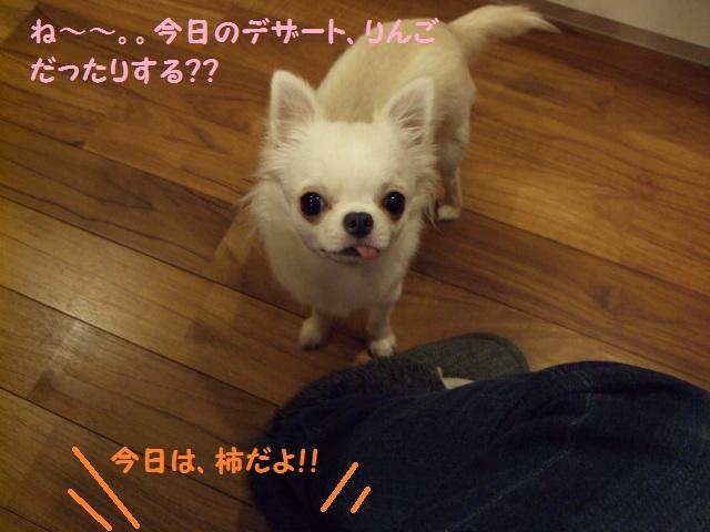 BLOG3878.jpg