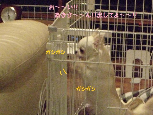 BLOG4367.jpg