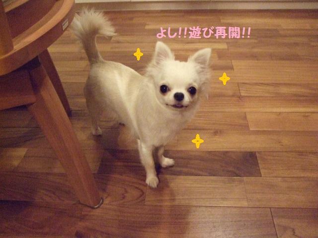 BLOG4633.jpg