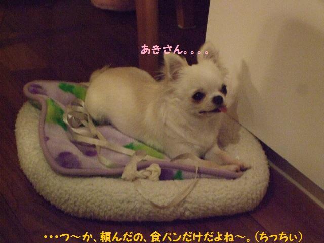 BLOG5431.jpg