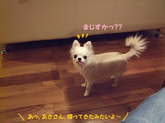 BLOG5440.jpg