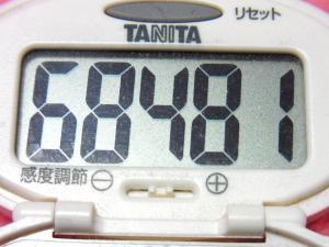 140119-251歩数計(S)