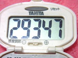 140201-251歩数計(S)