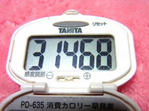 140208-261歩数計(S)