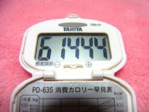140209-221歩数計(S)