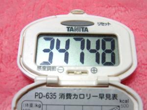 140211-251歩数計(S)