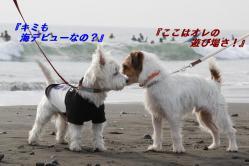 IMG_3065-1.jpg