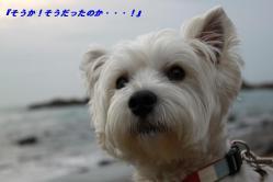 IMG_3095-1.jpg