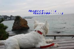 IMG_3104-1.jpg