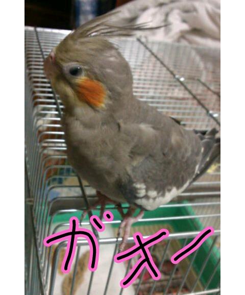 20121025-010010.jpg