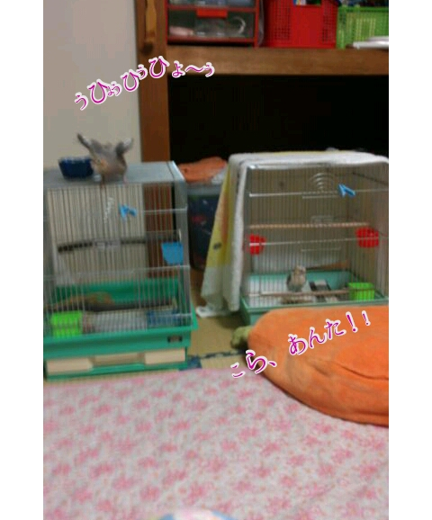 20121025-010448.jpg