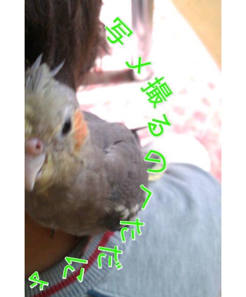 20121108-231547.jpg
