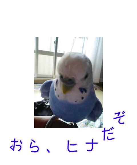 20121108-231840.jpg