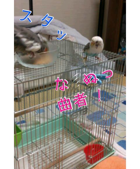 20121122-003701.jpg