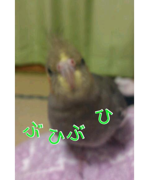 20121210-005403.jpg
