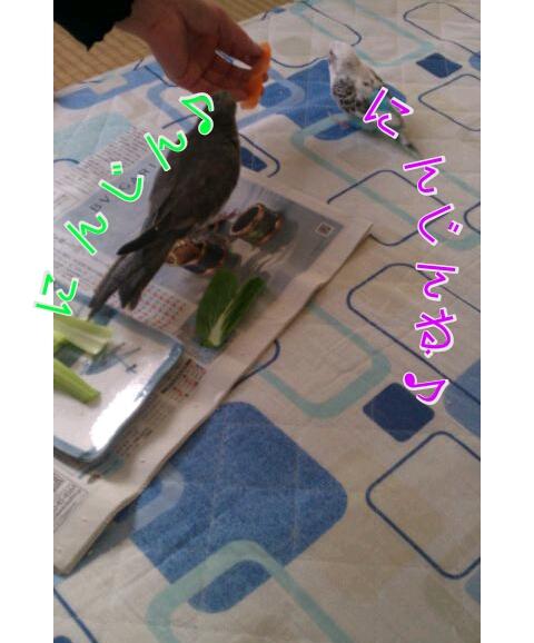 20121211-015029.jpg