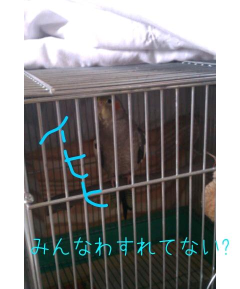 20121224-010556.jpg