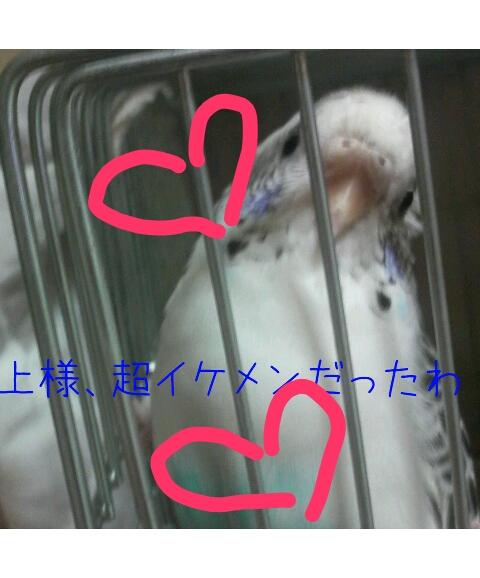 20121228-002242.jpg