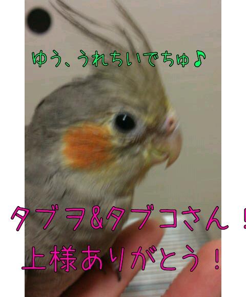 20121228-002741.jpg