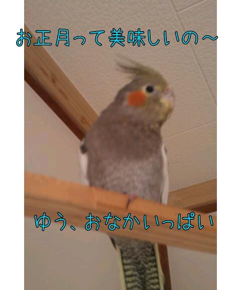20130101-020914.jpg