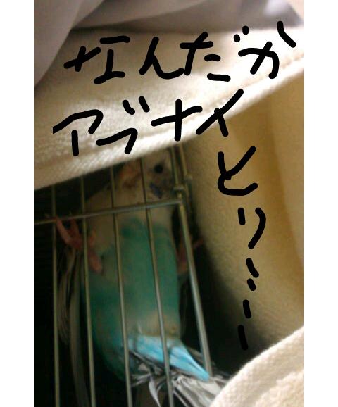 20130104-011736.jpg