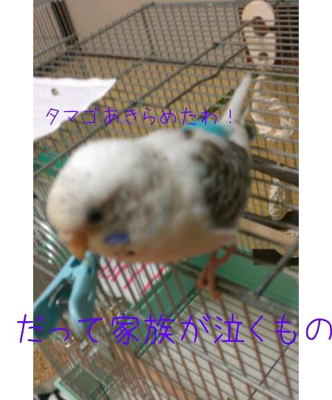 20130115-002653.jpg