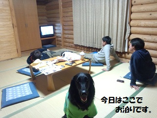 20131kote-zi2.jpg