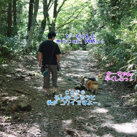 千条の滝からの湖尻水門【23.9.8】 NO2