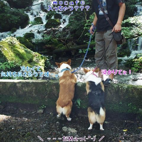 千条の滝からの湖尻水門【23.9.8】 NO3