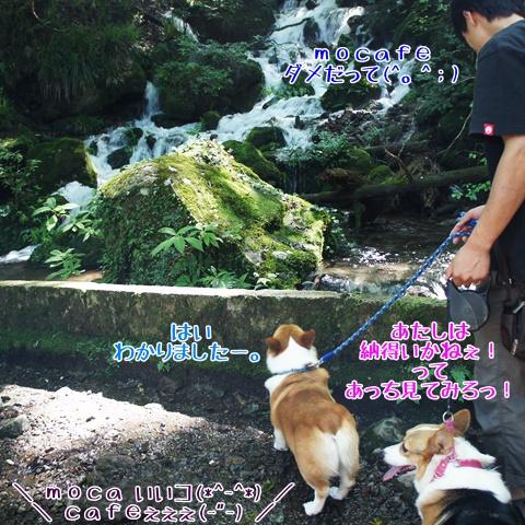千条の滝からの湖尻水門【23.9.8】 NO4