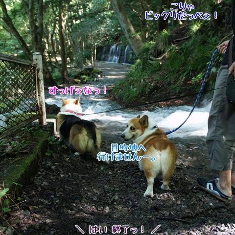 千条の滝からの湖尻水門【23.9.8】 NO5