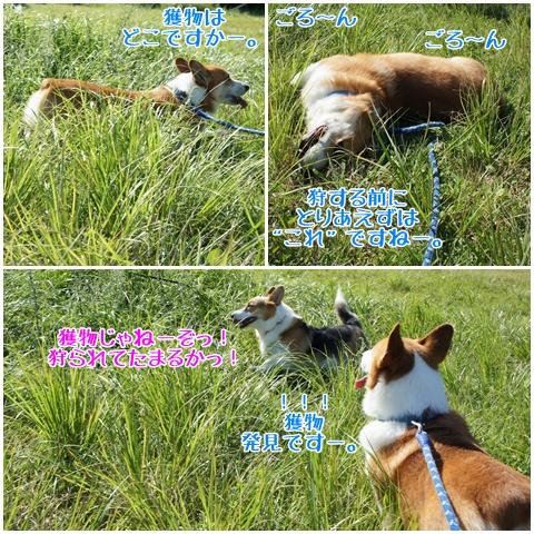 千条の滝からの湖尻水門【23.9.8】 NO14