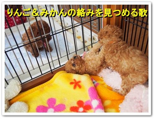 20140109_043.jpg