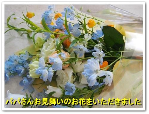 20140117_062.jpg