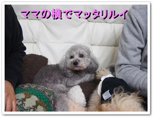 20140121_041.jpg