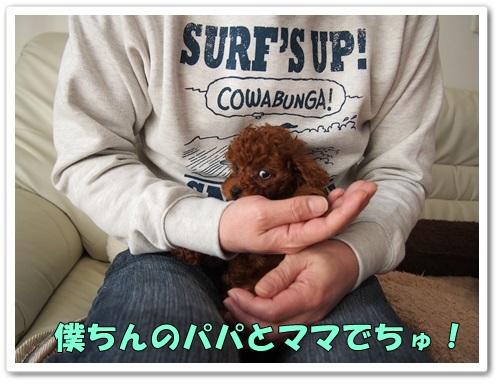 20140122_062.jpg
