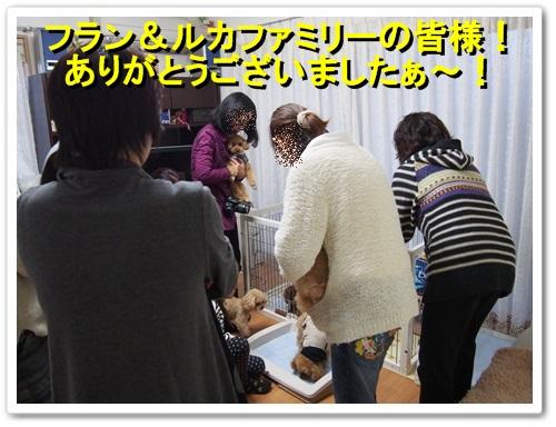 20140126_331.jpg