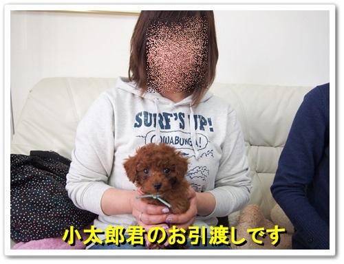 20140127_013.jpg